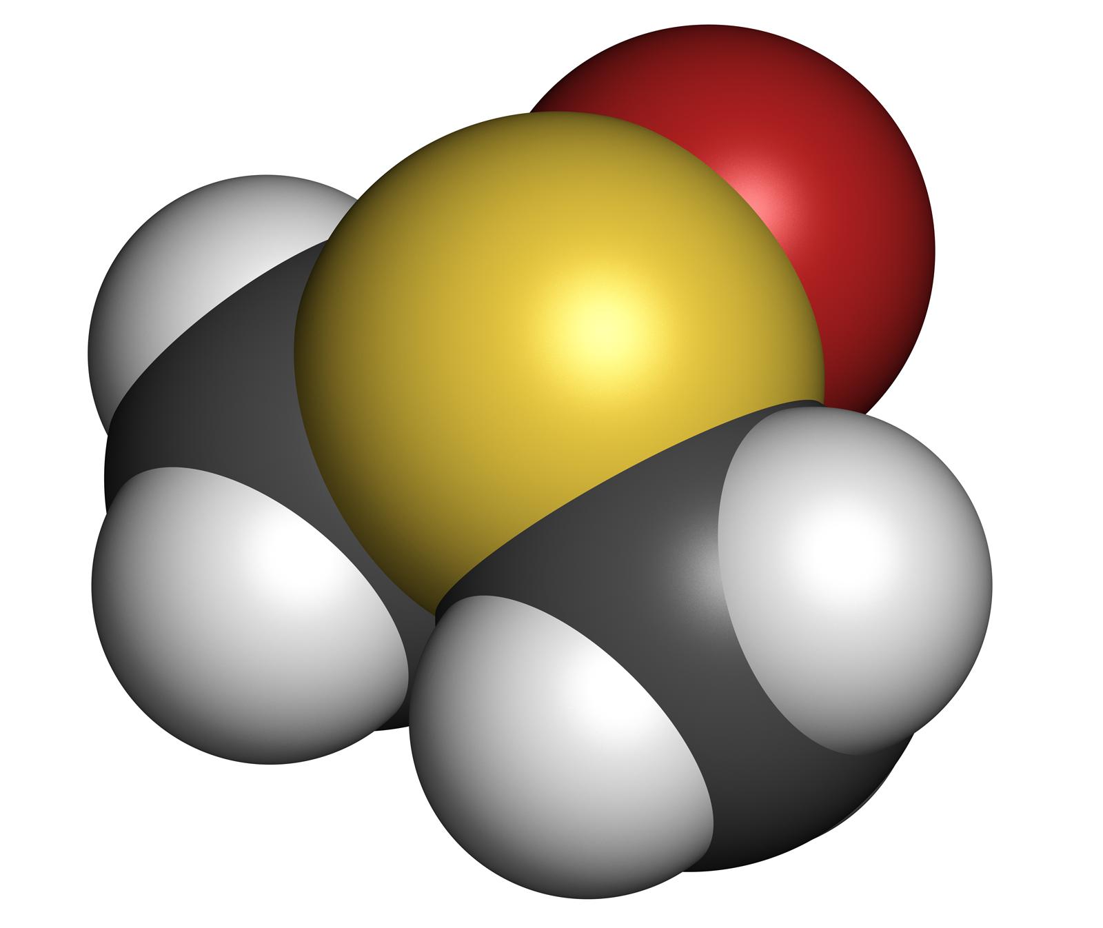 DMSO-DNA